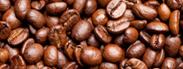 印尼:奇异的猫屎咖啡
