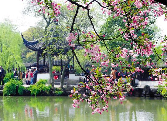 海棠花盛开的苏州拙政园 新华社/供图