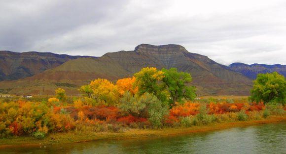一条清凉的小河,滋润着两岸金色的胡杨