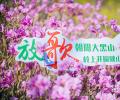 放歌朝阳大黑山——大黑山风景区2019春季旅行攻略